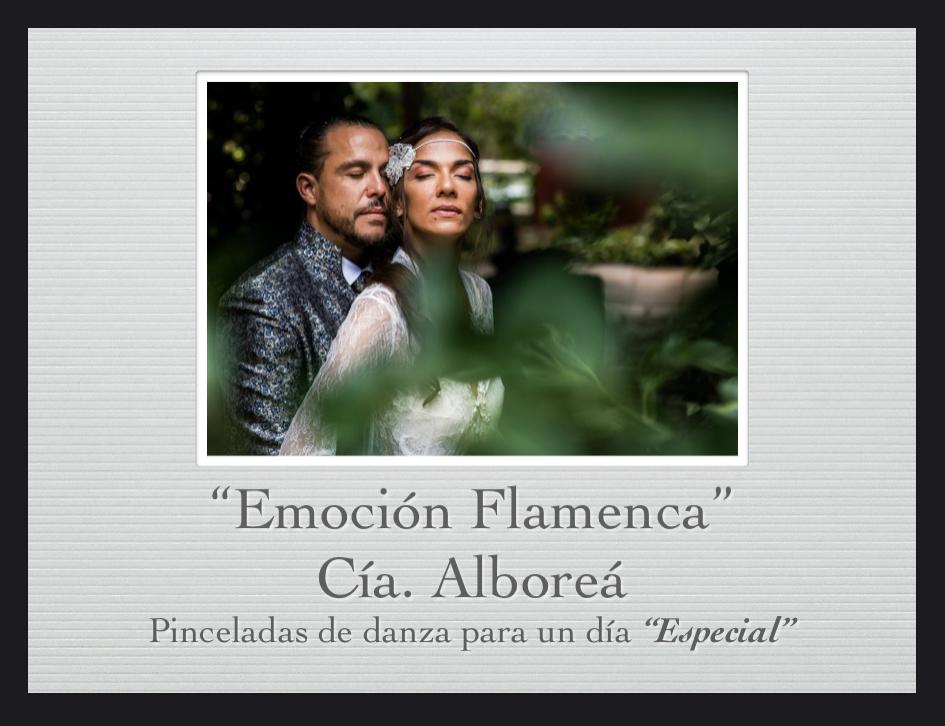 Art i Flamenc